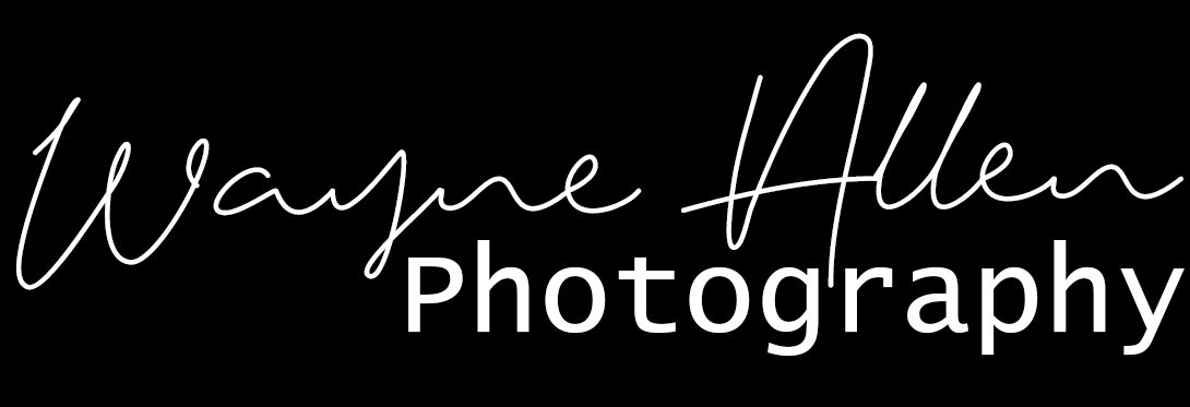 Wayne Allen Photography Text Logo White